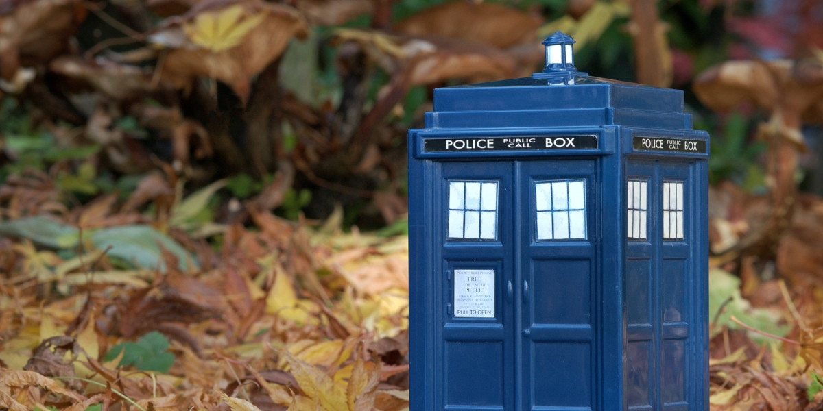 Can You Mix Dr Who with Dr Montessori?