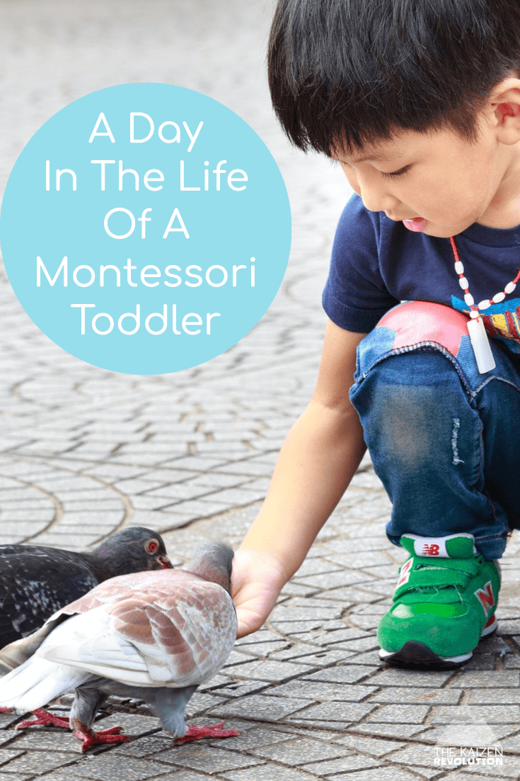 typical day for a montessori toddler | What does a Montessori child do all day at home? #montessori #dayinthelife #montessoriathome
