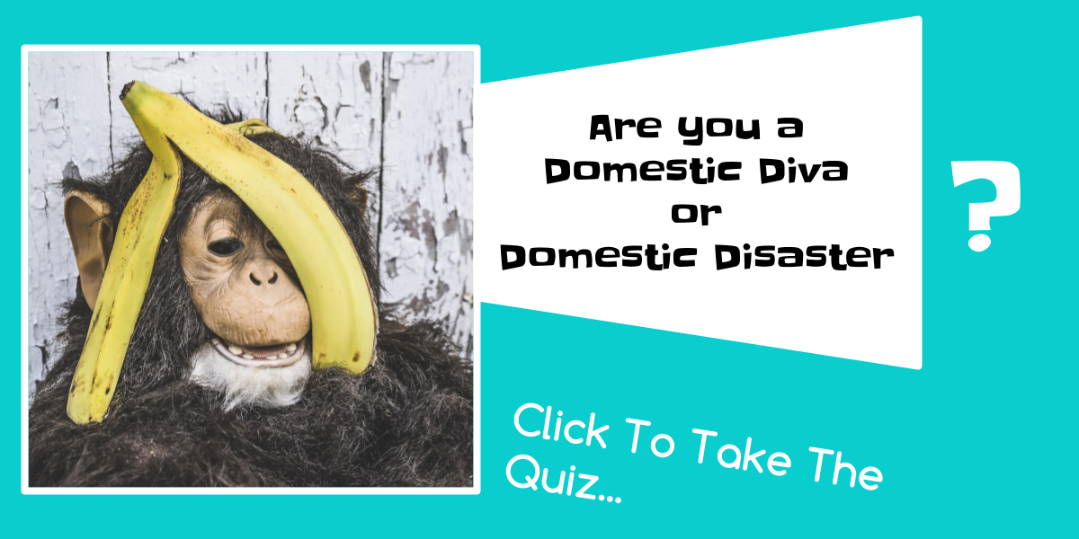 blog-post-monkey-domestic-diva-or-domestic-disaster