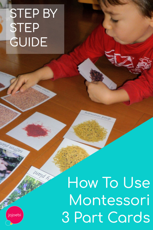 Step by Step guide - How to use Montessori 3 Part Cards