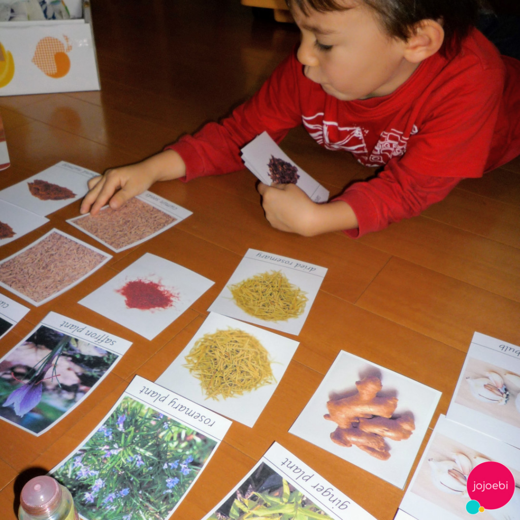 A kid is learning new information through Montessori cards