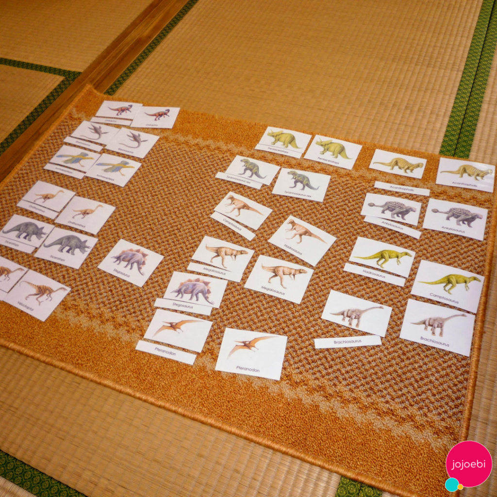 Using Montessori 3 part cards for education
